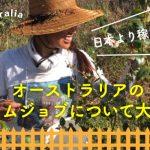 日本より稼げる?オーストラリアのファームジョブについて大公開!の画像