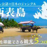 ミシュラン公認の日本のジャングル「西表島」!西表島を堪能できる観光5つのプラン!の画像