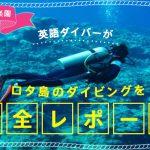 透明度世界一の楽園!英語ダイバーがロタ島のダイビングを完全レポート!の画像