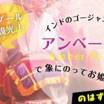 【体験記】象タクシーで行くインド・アンベール城へお姫様気分!?の画像
