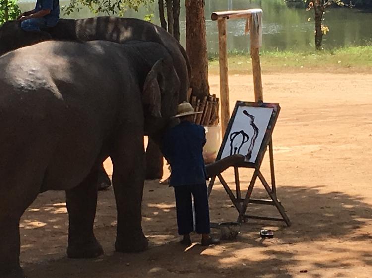 絶対外さないタイのお土産!象が描いた絵