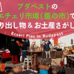 【攻略法】ブダペストのエチェリ市場(蚤の市)で掘り出し物&お土産さがし!の画像