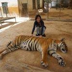 世界一危険な動物園?!猛獣たちと触れ合えるアルゼンチンのルハン動物園!の画像